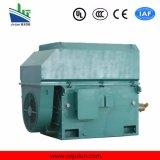 motore a corrente alternata Trifase ad alta tensione di raffreddamento Air-Air di serie di 6kv/10kv Ykk Ykk6303-12-560kw
