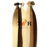Prodotti brasiliani pre legati dei capelli umani di Remy del Virgin di punta della cheratina
