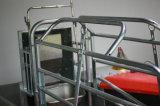 Galvanizado en caliente de nuevo diseño del parto las cajas para cerdos