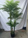 High Quality Artificial Seedlings off Palm Tree Gu-FF-Palm220cm