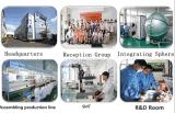 Gemaakt in China met LEIDENE AC/DC van de Verkoop van de Openhartigheid van de Groothandelsprijs van de Fabriek de Hete Populaire Verlichting van Kerstmis 24V