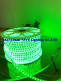 Yaye 18 Hot vender 12V/220V SMD2835 RGB LED Luz / TIRA TIRA DE LEDS SMD /iluminación decorativa LED
