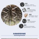 Ruierpuの家具-中国製家具-寝室の家具-グループのための家具-柔らかい家具-家具-ソファーベッド-ベッド-反ダニのばねのベッドのマット