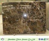 Bruine Plakken van de Tegels van de tulp de Bruine Marmeren