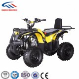 Lianmei ATV 110cc Kids ATV