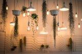 Bulbo del filamento del bulbo LED de la vela LED del bulbo del LED