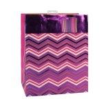 Покрасьте мешки волнистого подарка искусствоа магазина одежды способа бумажные