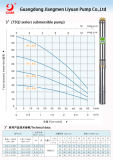 全ステンレス鋼の浸水許容の深い井戸水携帯用水ポンプの価格