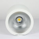 30W LEDの穂軸の表面によって取付けられるDownlight白いLEDの照明