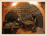 Horno de Hoffmann para la fabricación del ladrillo de la arcilla