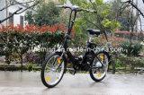 24V 10ah Lithium-Batterie-Cer-Bescheinigungs-Falten-elektrisches Fahrrad