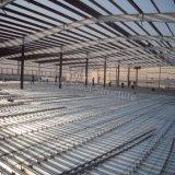Costruzione della tettoia dell'impianto di lavorazione della struttura del metallo con l'ampia luce