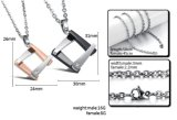 De Reeks van de Juwelen van de Minnaars van het Staal van de Halsband van de Paren van de manier 316L