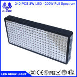 1000W 가득 차있는 스펙트럼 LED는 실내 플랜트 Veg를 위해 가볍게 증가하고 성장하고 있는 빛 (12 악대 5W/LED) 꽃이 피고, 뜰을 만든다 온실 Hydroponic 플랜트