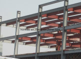 Het Staal die van de kleur het Lichte Pakhuis van de Fabriek van de Structuur van het Staal afdekken