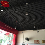 De binnenlandse Moderne Ontwerpen van het Plafond van de Decoratie Valse