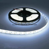 Venta caliente SMD3014 204LED luces tiras de LED flexible