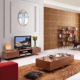 Moderner Wohnzimmer Fernsehapparat-Standplatz-Edelstahl-Marmor-Tisch (LTV2012)