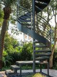 Escadaria espiral de vidro ao ar livre do aço inoxidável com balaustrada de aço