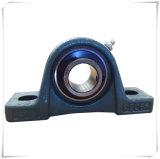Ferro de molde de Bxy que abriga o rolamento UCFL205 do bloco de descanso da flange de dois parafusos