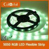 Luz de tira de la piscina de la alta calidad DC12V SMD5050 LED