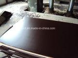 el pegamento Brown de 18m m /21mm WBP y la película fenólica negra hicieron frente a la madera contrachapada
