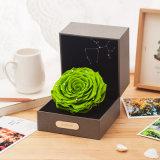 La promozione di vendita calda ha conservato il regalo dei fiori per il ricordo