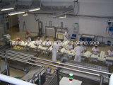 De Witte Lopende band van uitstekende kwaliteit van de Kaas
