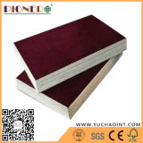 Good Quality Film Faced Plywood with Black Film Plywood Prices