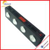 O diodo emissor de luz dos girassóis da certificação 500W do FCC PSE RoHS do Ce cresce a luz
