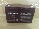 12V100ah Bateria de chumbo-ácido selada Np100-12