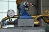 Macchina di taglio dell'oscillazione idraulica di CNC di QC12k 10*2500