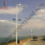 6m 30W de iluminación de todo el año calle la luz solar (DZS-06-30W)