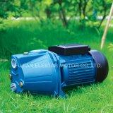 Js Serien-Strahlen-selbstansaugende Pumpe für Garten