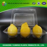 Прозрачная, котор замерли коробка упаковки для плодоовощ