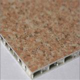La couleur de revêtement de mur extérieur a enduit des panneaux de nid d'abeilles, l'utilisation de matériaux de construction (HR764)