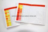 Carte à base d'eau de brochure d'ombre de couleur de pâte de couleur