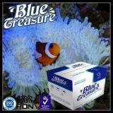파란 보물 바닷물 수족관