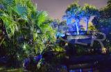 Projecteur de laser d'exposition d'étoile de lumière de décoration de Green&Blue