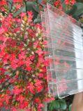 Feuille claire de cavité de polycarbonate de Triple-Mur de constructeur de la Chine pour la toiture
