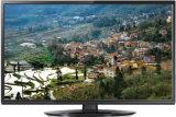 23.6 pouces DEL TV 24L41