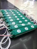 Nuovo segno di illuminazione del modulo 110V 220V del LED