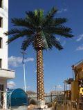 Piante e fiori artificiali della palma da datteri 10m