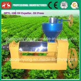 2016 Tung Seeds, Jatropha Seeds, Plam Oil Processing Machine, Oil Pressing Machine