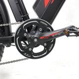 超雪、砂および浜En15194のためのシステムが付いている1000W電気自転車の脂肪質のバイク
