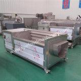 Handelskürbis-/Karotte-Pinsel-Waschmaschine