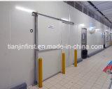 Chambre froide Cold Storage réfrigérateur congélateur/viande pour la Chine