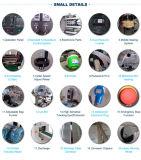 高容量の多機能のいちごの包装機械日付のパッキング機械価格