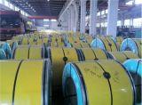 La couleur a enduit la bobine en acier PPGI d'enduit de Zn pour le plafond de construction