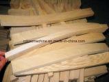 Scie à ruban de courbe de CNC en bois pour la coupe de bois d'administration